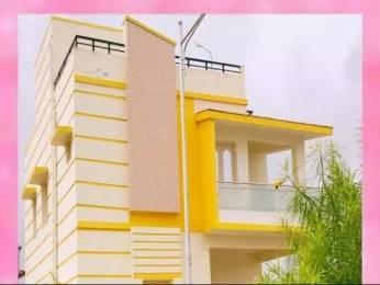 1775 sqft, 3 bhk Apartment in Builder platinum entity Gannavaram, Vijayawada at Rs. 58.6250 Lacs