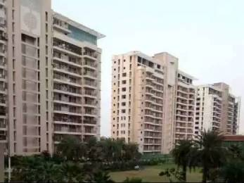 2700 sqft, 4 bhk Apartment in Omaxe Royal Residency Dad Village, Ludhiana at Rs. 1.1700 Cr