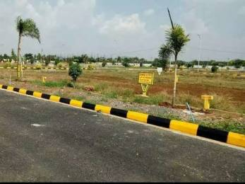 900 sqft, Plot in Builder Anand vihar Kantheru Road, Guntur at Rs. 10.0000 Lacs