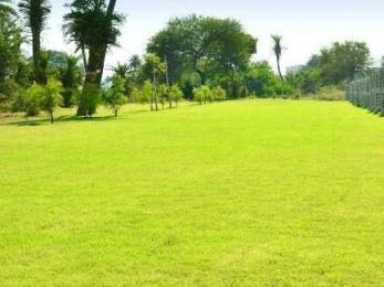 500 sqft, Plot in Builder Green View Primium Indore Bypass Road, Bhopal at Rs. 6.0000 Lacs