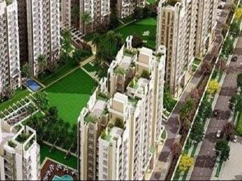 900 sqft, 2 bhk Apartment in Builder Project Sohna Palwal Road, Gurgaon at Rs. 25.0000 Lacs