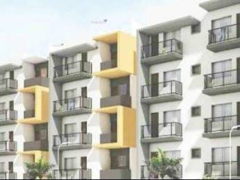 1312 sqft, 3 bhk Apartment in Pyramid Carnations Yelahanka, Bangalore at Rs. 51.1700 Lacs