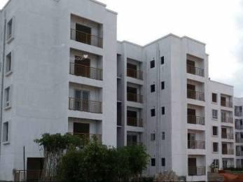 1120 sqft, 2 bhk Apartment in NR Windgates Jakkur, Bangalore at Rs. 49.9800 Lacs