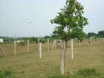 6850 sqft, Plot in KUL Meadows Manjari, Pune at Rs. 2.4000 Cr