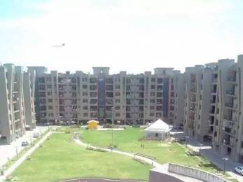 1700 sqft, 3 bhk Apartment in Hanumant Bollywood Heights I Panchkula Sec 20, Chandigarh at Rs. 57.0000 Lacs