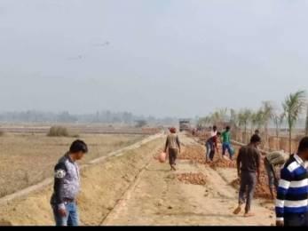 1000 sqft, Plot in Builder kohinoor fatehabad road, Agra at Rs. 7.5000 Lacs