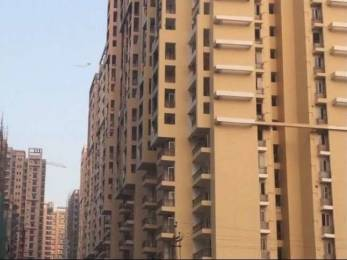 1105 sqft, 2 bhk Apartment in Gulshan Bellina Sector 16 Noida Extension, Greater Noida at Rs. 40.5000 Lacs