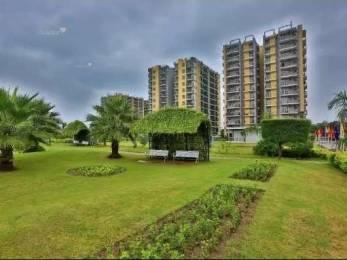 1443 sqft, 3 bhk Apartment in Trishla City Bhabat, Zirakpur at Rs. 47.0000 Lacs