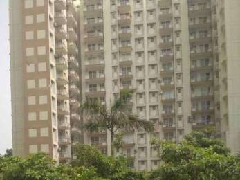 600 sqft, 2 bhk Apartment in Builder osb sector 69 Sector 69, Gurgaon at Rs. 21.0000 Lacs