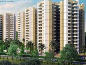 1110 sqft, 2 bhk Apartment in Stellar MI Citihomes Omicron, Greater Noida at Rs. 9000