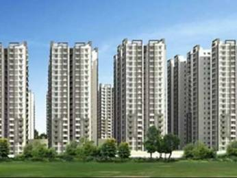 1580 sqft, 3 bhk Apartment in Cybercity Rainbow Vistas Rock Gardens Hitech City, Hyderabad at Rs. 32000