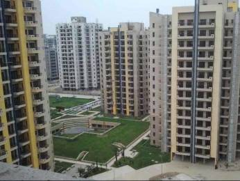 1661 sqft, 3 bhk Apartment in RPS Savana Sector 88, Faridabad at Rs. 55.0000 Lacs