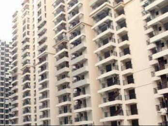 1855 sqft, 4 bhk Apartment in Builder Gaur City 1st Avenue Gaur City Noida Extension Greater Noida West Gaur City 1, Greater Noida at Rs. 12000
