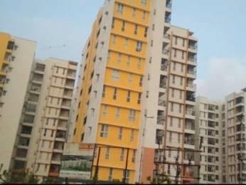 1350 sqft, 3 bhk Apartment in Olympia Grande Pallavaram, Chennai at Rs. 23000