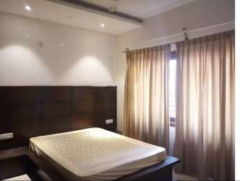 1800 sqft, 3 bhk Apartment in Builder Project Benson Town, Bangalore at Rs. 60000
