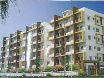 1175 sqft, 2 bhk Apartment in Builder Project N R Peta, Kurnool at Rs. 29.3750 Lacs