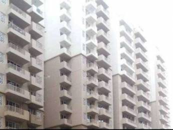 1615 sqft, 3 bhk Apartment in Express Zenith Sector 77, Noida at Rs. 14500