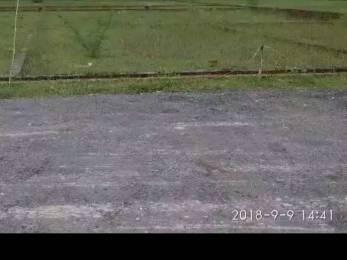 1000 sqft, Plot in Builder Tashi Shine City Patna Sitamarhi Road, Patna at Rs. 5.0100 Lacs