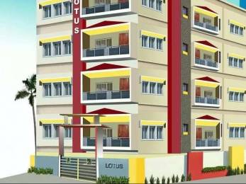 1265 sqft, 3 bhk Apartment in Builder Project Dispur, Guwahati at Rs. 55.0000 Lacs