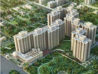 750 sqft, 2 bhk Apartment in Signature The Serenas Sector 36 Sohna, Gurgaon at Rs. 20.0000 Lacs