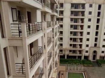 300 sqft, 1 bhk Apartment in Unique UDB Orchid Ajmer Road, Jaipur at Rs. 6800