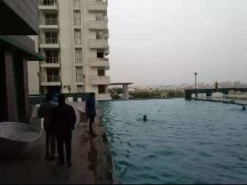 4025 sqft, 4 bhk Apartment in Omaxe The Forest Spa Sector 43, Faridabad at Rs. 70000