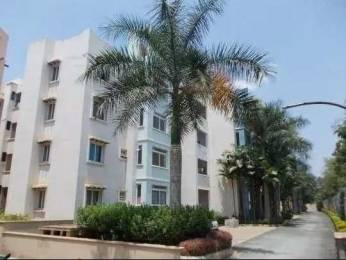 1100 sqft, 2 bhk Apartment in Builder Project Richmond Town, Bangalore at Rs. 61000