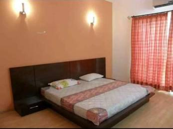1275 sqft, 2 bhk Apartment in Builder Project Heritage City, Gurgaon at Rs. 50000