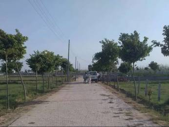 900 sqft, Plot in Builder royal vatika city Sector 29 Faridabad, Faridabad at Rs. 17.0000 Lacs