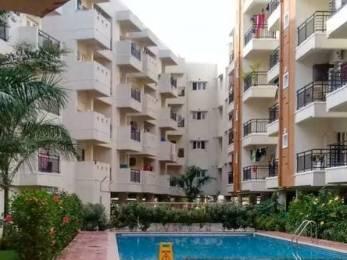 1310 sqft, 2 bhk Apartment in Samhita Sarovar Horamavu, Bangalore at Rs. 24500