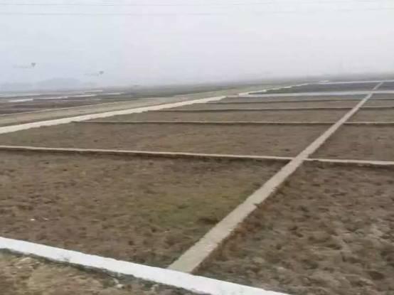 1000 sqft, Plot in Builder Mountain heaven Tehseal Road, Mirzapur at Rs. 3.5000 Lacs