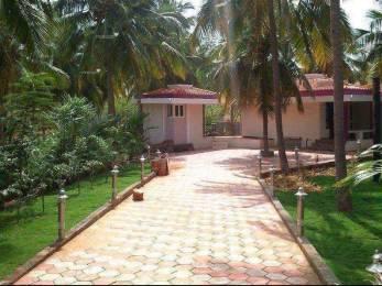 4360 sqft, Plot in Builder star Holiday Resort Natham Madurai Chatrapatti, Madurai at Rs. 5.0000 Lacs