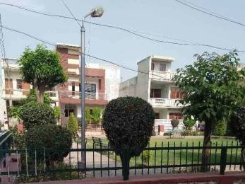 1575 sqft, 2 bhk Apartment in Builder Project HJBlock Road, Ludhiana at Rs. 16000