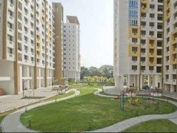 1440 sqft, 3 bhk Apartment in Ideal Ideal Regency Joka, Kolkata at Rs. 65.0000 Lacs