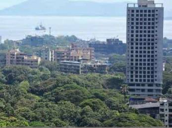 553 sqft, 2 bhk Apartment in The Baya Victoria Byculla, Mumbai at Rs. 1.7000 Cr