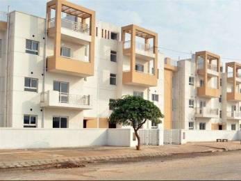 1269 sqft, 3 bhk BuilderFloor in BPTP Park Elite Premium Sector 84, Faridabad at Rs. 31.0000 Lacs