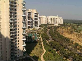 6565 sqft, 4 bhk Apartment in DLF Magnolias Sector 42, Gurgaon at Rs. 3.1500 Lacs