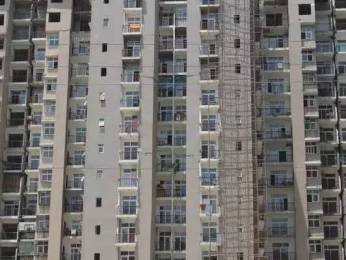 1775 sqft, 3 bhk Apartment in Amrapali Zodiac Sector 120, Noida at Rs. 12500