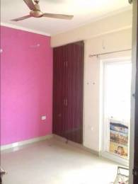 550 sqft, 1 bhk Apartment in The Antriksh Kanball 3G Sector 77, Noida at Rs. 9000