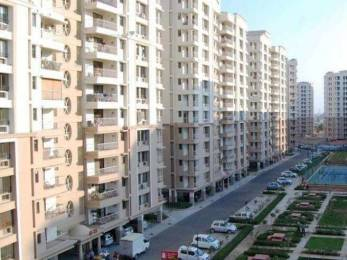 1660 sqft, 3 bhk Apartment in Ashiana Rangoli Gardens Panchyawala, Jaipur at Rs. 19000