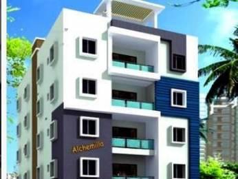 1560 sqft, 3 bhk Apartment in Builder Alchemilla Yendada, Visakhapatnam at Rs. 55.0000 Lacs