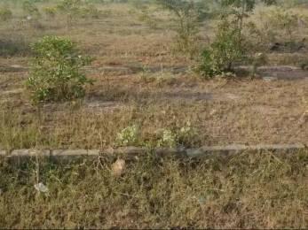 2400 sqft, Plot in Builder Project Periyanaickenpalayam, Coimbatore at Rs. 15.0000 Lacs
