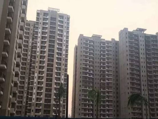 1085 sqft, 2 bhk Apartment in Nimbus The Golden Palms Sector 168, Noida at Rs. 48.5000 Lacs