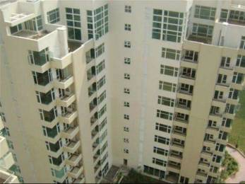 2311 sqft, 3 bhk Apartment in Raheja Atlantis Sector 31, Gurgaon at Rs. 55000