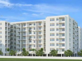 1282 sqft, 3 bhk Apartment in Builder Project Guduvancheri, Chennai at Rs. 51.2800 Lacs