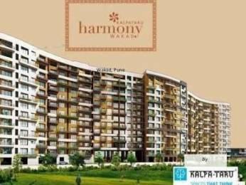 950 sqft, 1 bhk Apartment in Kalpataru Harmony Wakad, Pune at Rs. 17500