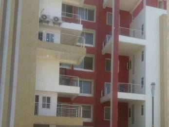 1450 sqft, 3 bhk Apartment in Builder Project Mp Nagar, Bhopal at Rs. 25000