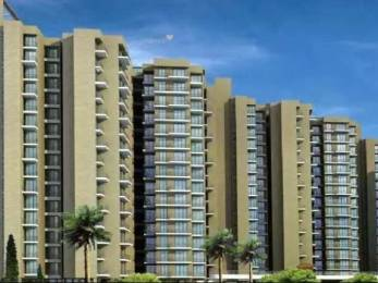 1178 sqft, 2 bhk Apartment in Builder Project Dronagiri, Mumbai at Rs. 60.0000 Lacs