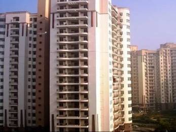 1000 sqft, 2 bhk Apartment in Mahira Homes Sector 68, Gurgaon at Rs. 22.2489 Lacs