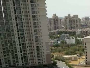 1985 sqft, 3 bhk Apartment in DLF Park Place Sector 54, Gurgaon at Rs. 80000